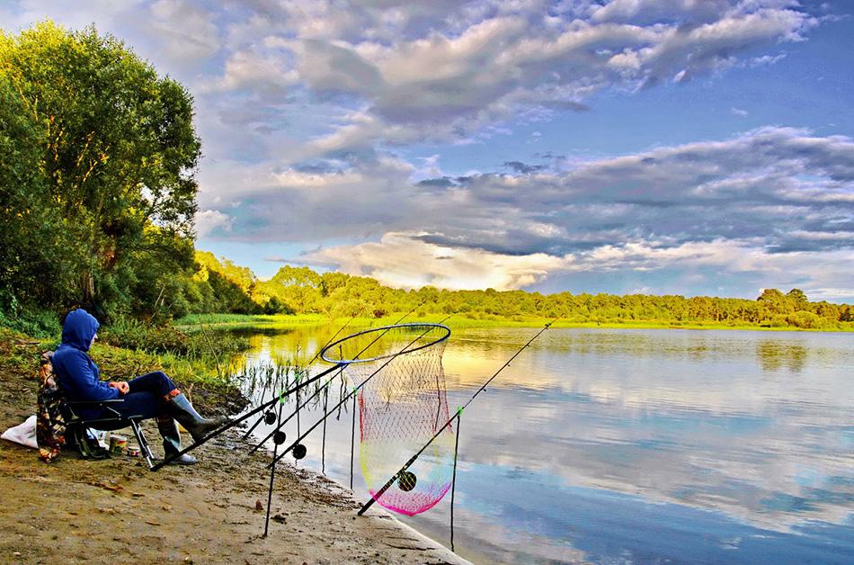Летняя рыбалка утром